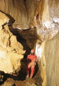 Jaskyna mrtvych netopierov Nizke Tatry